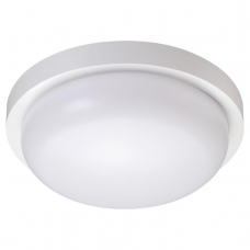Потолочный уличный светильник NOVOTECH OPAL 358016